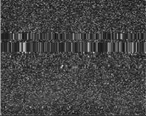 Деградация изображения с FPA-фотоматрицы при дозовом воздействии:10 крад